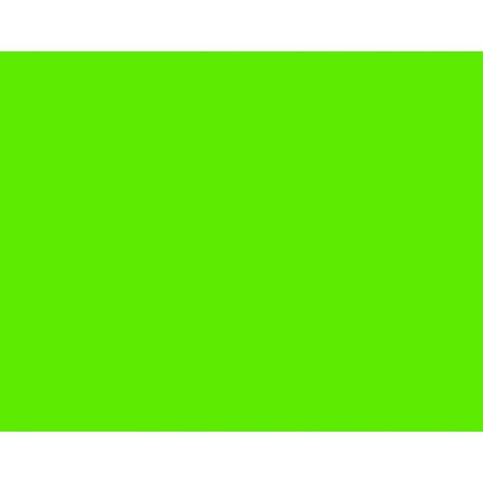 BAZIC Fluorescent Green 22 X 28 Poster Board