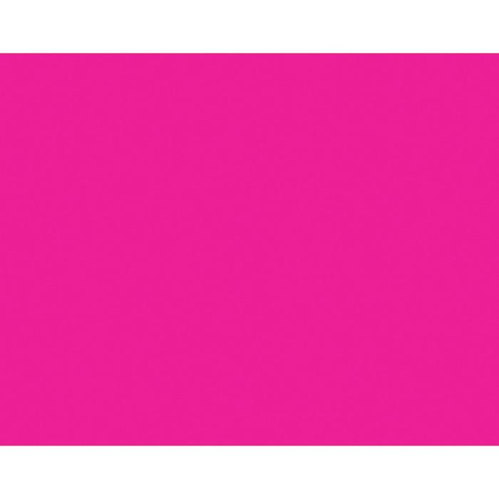 BAZIC Fluorescent Pink 22 X 28 Poster Board